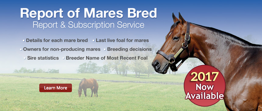 Report of Mares Bred
